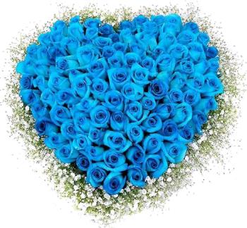 букет голубых роз