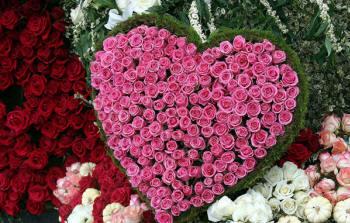 миллион роз